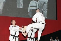 rotary-twin-kick